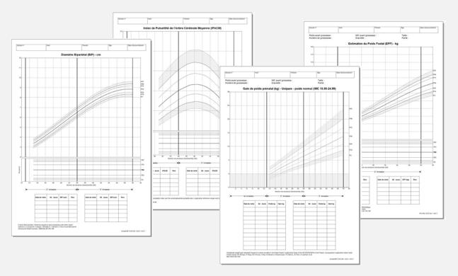BE-prenatal-group-of-charts-gray